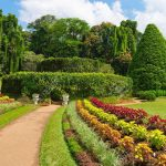 20840781-Beautiful-tropical-Royal-Botanical-Gardens-Peradeniya-Kandy-Sri-Lanka-Stock-Photo