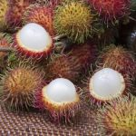 Rambutan_fruit_Sri_Lanka